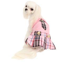 Júnior vestido de cão Puppia