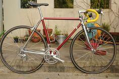 Red Vitus 992
