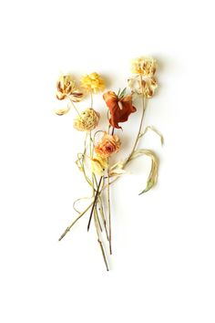 yellow bouquet | STILL (mary jo hoffman) Dried Flower Bouquet, Dried Flowers, Spring Screensavers, Yellow Bouquets, Mood Images, How To Preserve Flowers, World Of Color, Tropical Flowers, Picture Wall