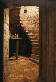 Stone staircase down into the Wine Cellar, Birr Castle, Ireland