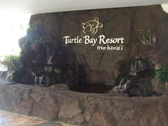 Turtle Bay Resort Condo