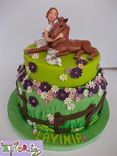 Horse cake. Fondant cake decorate.