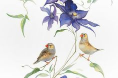 The world of botanical art in its best, inspired by magic of the natural beauty all around us