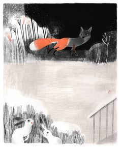 fox, illustration, design, rabbit, drawing, painting, nature, art