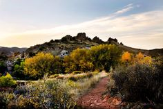 Devil's Backbone Nature Trailnear Loveland, Colorado is quite the sight. The protruding rocks poking their jagged edges along the hillside tell an old story that only geology is able to shar…