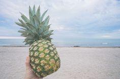 #beach #fruit #hand #island #landscape #outdoors #pineapple #sand #sea #seashore #shore #sky #thumb #tropical #tropical fruit #water