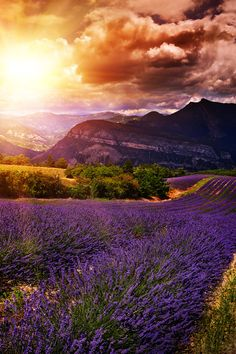 so *~majestic~* #landscapephotography #landscape #photography