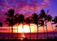 Resultado de imagem para havai