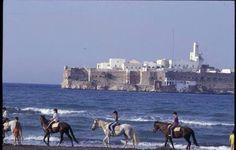 Asfiha plage. Du alhoceima #maroc #twittoma #morocco #teammaroc #teamrif pic.twitter.com/2RdJ02eDQo