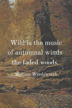 Poems By Famous Poets, Famous Shakespeare Quotes, Thoreau Quotes, Poet Quotes, Author Quotes, Quotable Quotes, Winter Quotes, Fall Quotes, William Wordsworth Poems