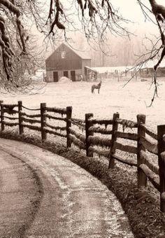 Winter Storm, Barn, & Horse In Barnyard
