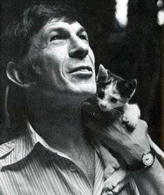 Leonard Nimoy and a Kitten. Because Leonard Nimoy and a Kitten. Leonard Nimoy, Crazy Cat Lady, Crazy Cats, I Love Cats, Cool Cats, Patricia Highsmith, Celebrities With Cats, Celebs, Men With Cats