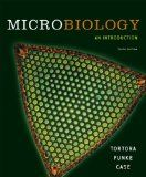 Test bank for microbiology an introduction edition by tortora and funke and case 0321550072 Edition 9780321550071 Berdell R. Funke Christine L. Case Gerard J. Environmental Microbiology, Recombinant Dna, Antimicrobial Resistance, Science Biology, Biology Test, Learning Objectives, Reproductive System, Online Tests, Lymphatic System