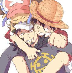 One Piece, Law, Luffy, Chopper