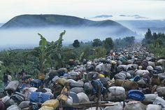 A rwandan fate - Christophe Calais/Signatures