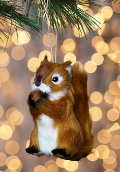I'm Just a Squirrel Ornament. Decorate your dwelling in charmingly rustic style with this quirky ornament by One Hundred 80 Degrees. #multi #modcloth