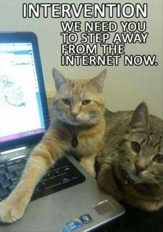 Internet intervention