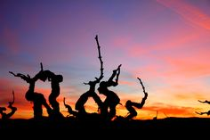 https://flic.kr/p/QqjtDK | Posta de sol a les Vinyes del Penedes.