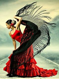 Flamenco Nina-Teza by Burak Carakoglu . Flamenco Nina-Teza by Burak Carakoglu Mehr Shall We Dance, Just Dance, Danse Salsa, Belly Dancing Classes, Spanish Culture, Salsa Dancing, Ballroom Dancing, Ballroom Dress, Dance Photos