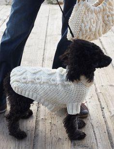 Biscuits & Bones Dog Coat - Free Knit Pattern | Yarnspirations