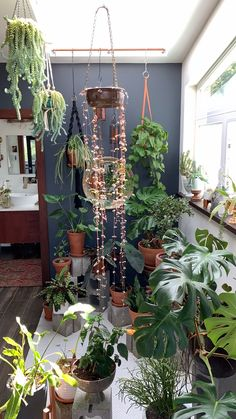 Sacred Space Redesign - Sacred spaces at home - Zimmerpflanzen Indoor Garden, Indoor Plants, Home And Garden, Indoor Plant Decor, Indoor Greenhouse, Indoor Trees, Garden Shop, Small Patio Ideas On A Budget, Budget Patio
