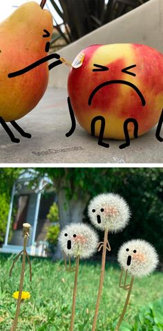 Funny - Surprised Dandelions and Frustrated Erasers Come to Life in Delightful Illustrations by Sean Charmatz Funny Animal Pictures, Funny Photos, Universal Emotions, Funny Art, Funny Memes, Kawaii Faces, Storyboard Artist, Colossal Art, Funny Wallpapers