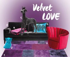 1. Carpet Patchwork  2. Money Box  3. Sofa Casino  4. Plaid Sindbad  5. Studiosus Dog  6. Cushion Ornament Turkis  #velvet #love #furniture #accessories #carpet #couch #KARE #KARErocks #Cyprus #design #lifestyle #home #living