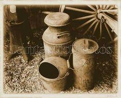 Antique milk cans...