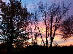 #autumnsunrise