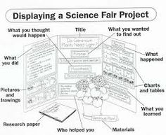 college essay counseling essay of the great depression dialectical example of research paper for science fair ib extended essay