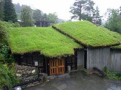 大工の目: 屋上緑化                                                                                                                                                      もっと見る