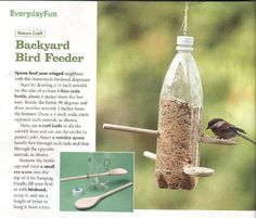 Very simple backyard bird feeder made with a one liter bottle.