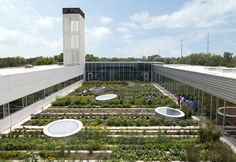 ASLA 2010 Professional Awards | Rooftop Haven for Urban Agriculture