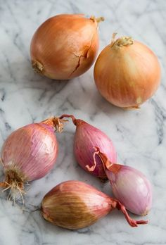 Difference between: onions and shallots.