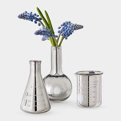 Forgo the traditional flower vessels for these geek-chic silver labware vases ($50).