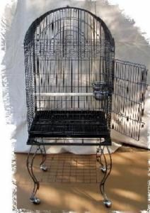Bird Cages For Cockatiels | Bird Cage Stand Budgie Lovebird Cockatiel Conure 2 | eBay