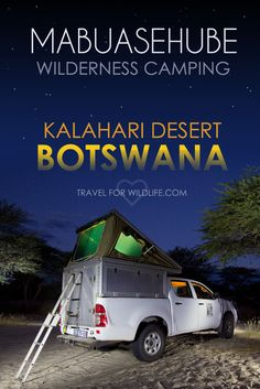 Everything you need to know about camping in the Mabuasehube Reserve in the Kgalagadi Transfrontier Park, Botswana. Kalahari camping at its finest! This is one African adventure that you cannot miss. Once you are done with your African safari at a safar Africa Travel, Us Travel, Family Travel, World Travel Guide, Travel Guides, Travel Tips, Camping Places, Camping Tips, Survival Prepping