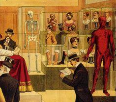 Anatomy Museum, Hamburg, Germany, 1913