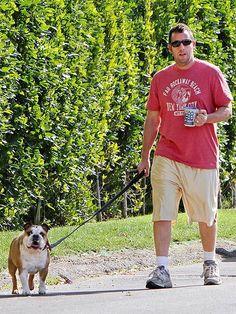 adam sandler has a bulldog <3 makes me like them just a little more d: