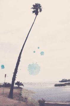Off The Beaten Path: Santa Barbara | Free People Blog