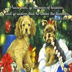 "Psalm 148:4 (1611 KJV !!!!) "" Praise him, ye heavens of heavens, and ye waters that be above the heavens,"""