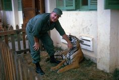 Pet tiger - Vietnam, 1963
