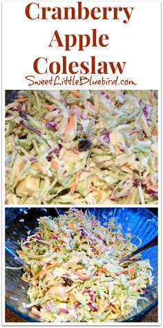 Cranberry Apple Coleslaw - Awesome recipe that's always a hit! {you can substitute cranberries with raisins or dried cherries} So simple to make. So good. SweetLittleBluebird.com