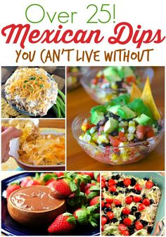 25+ Mexican Dip Recipes You Can't Live Without! - wearychef.com