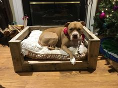 Reclaimed wood dog bed by Pallets4Paws on Etsy