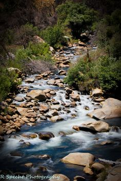 Rivernook campground kern river beautiful places to go for Kern river fishing spots