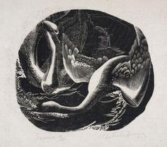 Gertrude Hermes | Swans | Wood-Engraving | 1927    14 x 15.5 cm