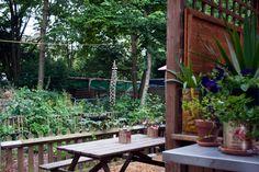 Frizzante – Hackney City Farm