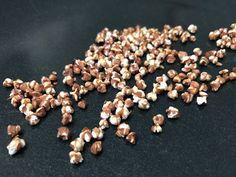 Popped buckwheat - how to pop barley, quinoa, arborio rice, brown rice, and buckwheat, just like regular popped corn