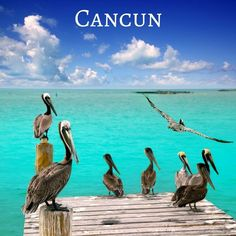 e9fb07f818a44 Haven t booked your Cancun getaway yet  Don t delay